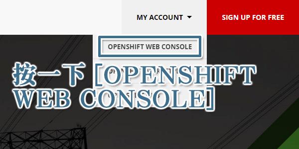 按一下 [OPENSHIFT WEB CONSOLE]