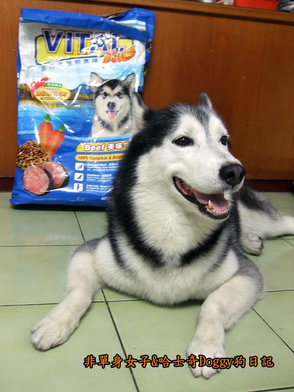 哈士奇Doggy愛狗零食26