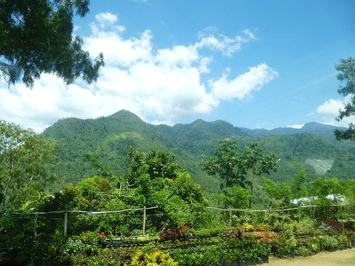 P16-Negros-Bacolod-San Carlos-route (38)