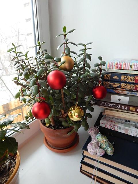 новогоднее дерево, вместо ёлки я украшаю новогодними шарами денежное дерево | Хорошо.Громко.