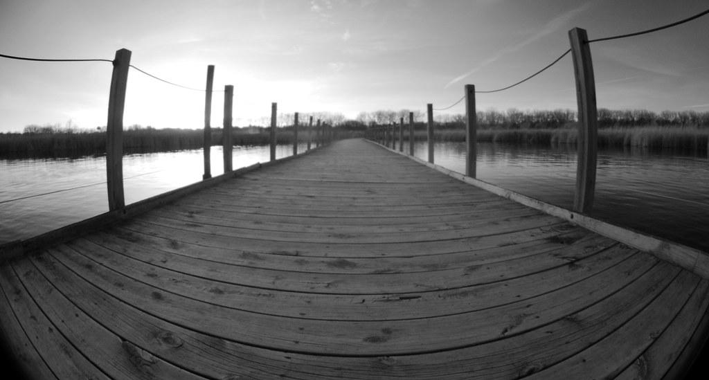 Wood Lake_18