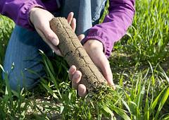 Bodenproben - Evaluer la qualité du sol