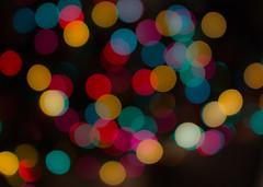 blurry Christmas tree (17)
