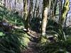 Hembre Ridge Trail
