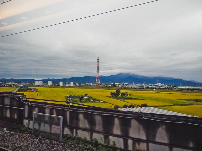 Osaka-Dotonbori-5