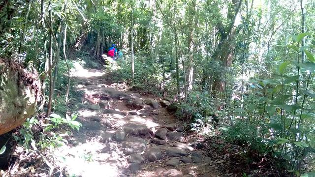 trilha-pedra-bonita8