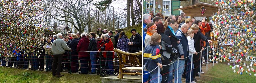 Слева фото отсюда www.eierbaum-saalfeld.de, справа отсюда http://saalfeld.otz.de/web/lokal/leben/detail/-/specific/Das-Ei-ist-der-Star-1913455330