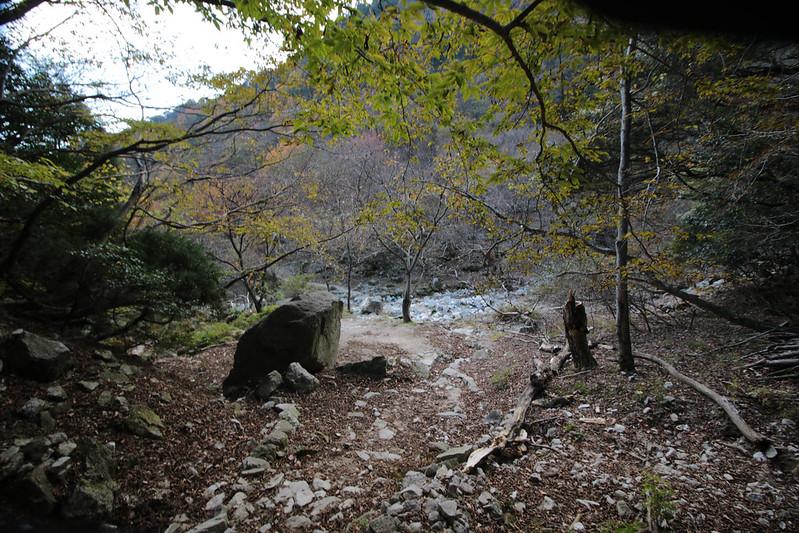 20141122-武奈ヶ岳&京都ライトアップ-0453.jpg