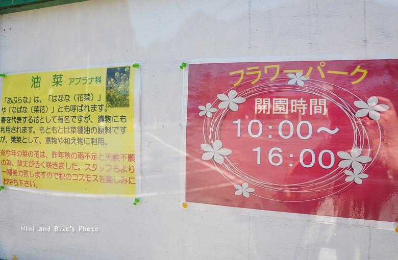 日本嵐山高雄保津川24