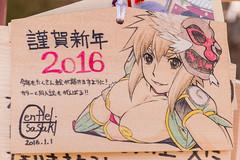 20160103-DSC_4903