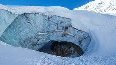 Czoło lodowca Gurgler Ferner