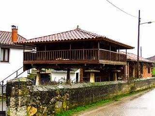 Camino Primitivo - 1 Oviedo-Grado (56)