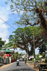Beshop Kureethara road