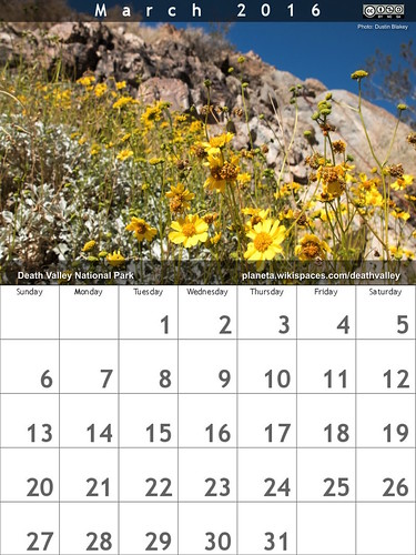 March 2016 Death Valley Calendar - will there be a #superbloom?