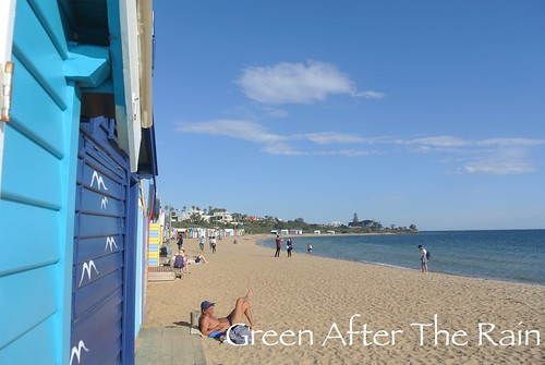 150914b Brighton Beach _58