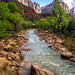 Virgin River carving through Zion Canyon by lewisfilms