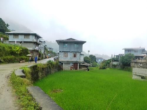 P16-Luzon-Mayoyao-Terrasses (31)