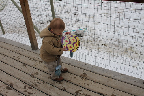 Easter at the Yukon Wildlife Preserve