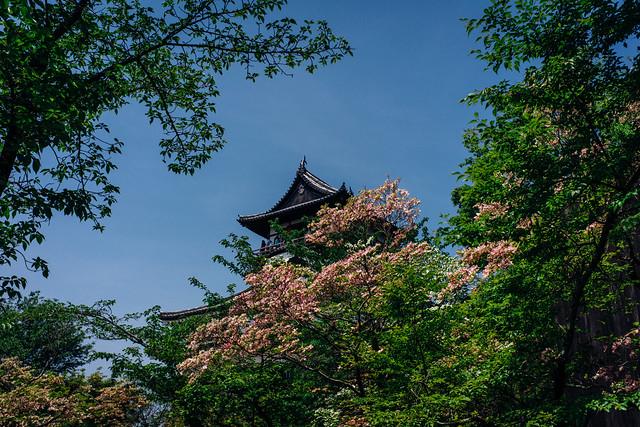 Inuyama_06