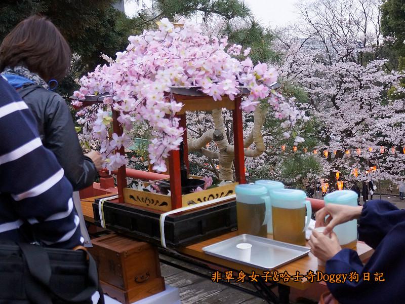日本東京上野恩賜公園櫻花07