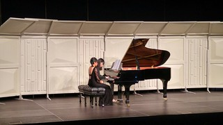 piano,pianist,keyboard,musical instrument,spinet