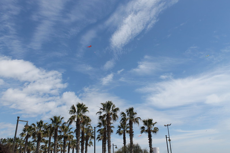 festival del viento 2016 valencia - malvarrosa