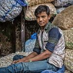 Portrait: Garlic Seller