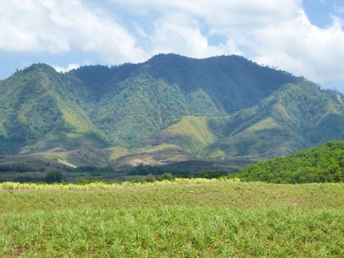 P16-Negros-Bacolod-San Carlos-route (22)