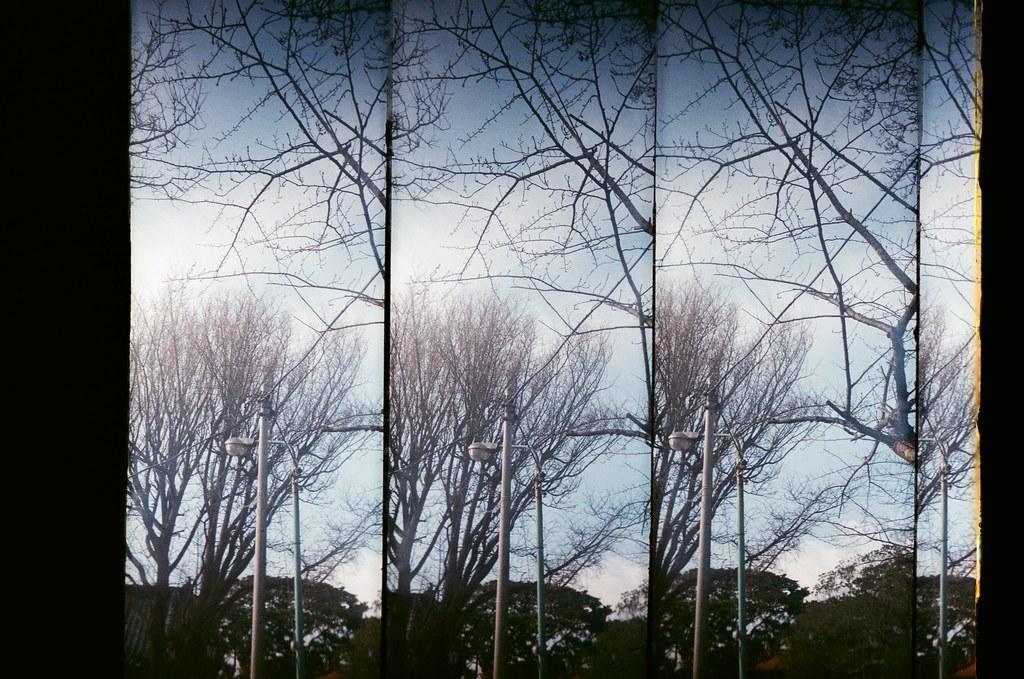 銚子市 千葉縣 Choshi, Japan / AGFA VISTAPlus / SuperSampler 在銚子亂走亂晃,到處把影像帶回來。  SuperSampler Dalek AGFA VISTAPlus ISO400 8266-0040 2016/02/05 Photo by Toomore