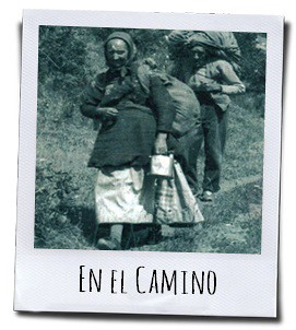 De kruidenvrouwen zwierven wekenlang door weer en wind, te voet over de Catalaanse vlakten, tot in de omgeving van de kust