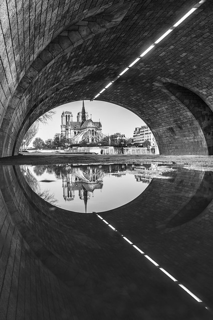 Reflections, Notre-Dame, b&w