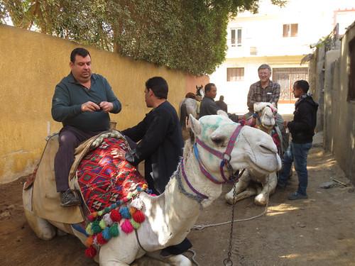 CamelRide1-03