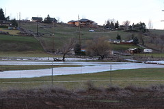 Widehollow Creek Flood, March 6, 2016