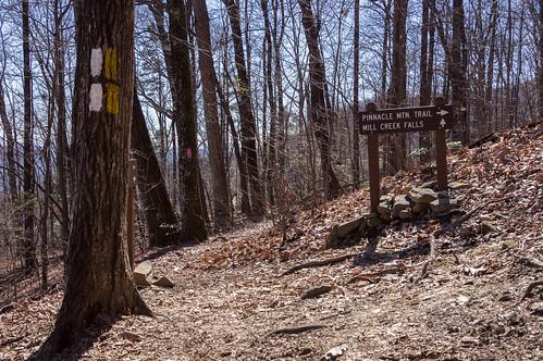 Mills Creek Falls Spur Trail