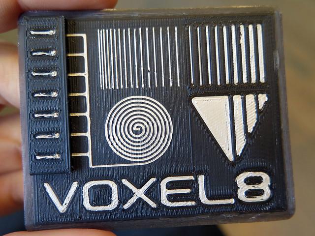 Voxel8 test print