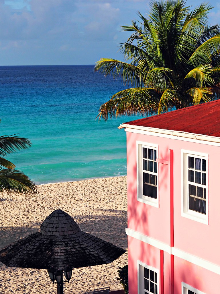 The Little Magpie Southern Palms Barbados Review 44