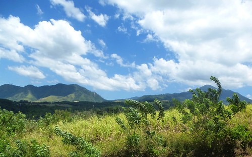 P16-Negros-Bacolod-San Carlos-route (26)