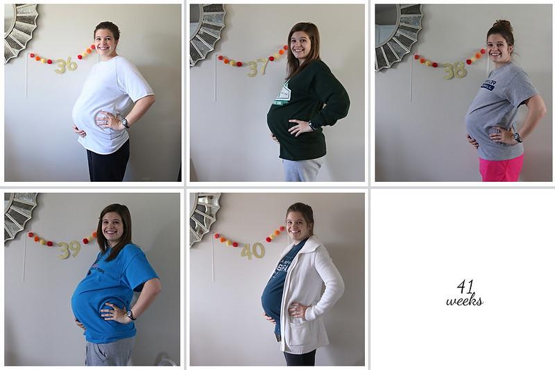 36-40 weeks