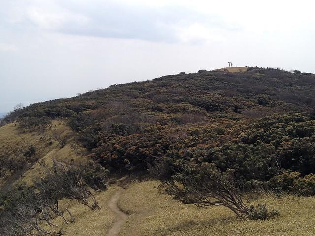 入道ヶ岳 北尾根より山頂