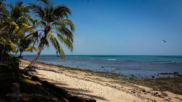 mambruk beach7-120057rw