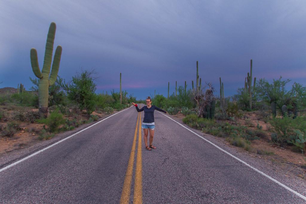 Saguaro-4
