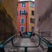 Daryshoot Bastia St Jo