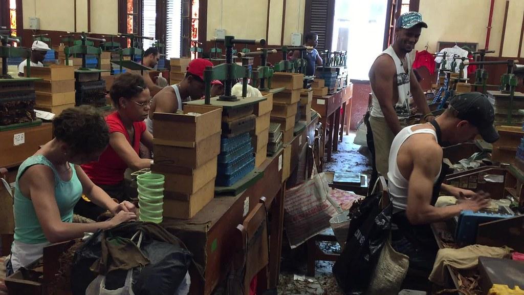 visita a la fábrica de puros de La Habana: Fabrica de Puros de La Habana en Cuba fábrica de puros de la habana - 26237180152 b51570fdde b - Visita a la fábrica de puros de La Habana en Cuba