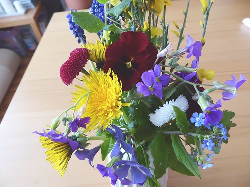 Flowerpowerbloggers - Blumen am Wegesrand