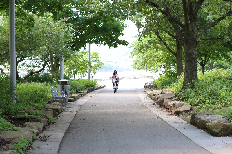 biking-trees-10