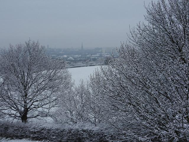 Wakefield View 3