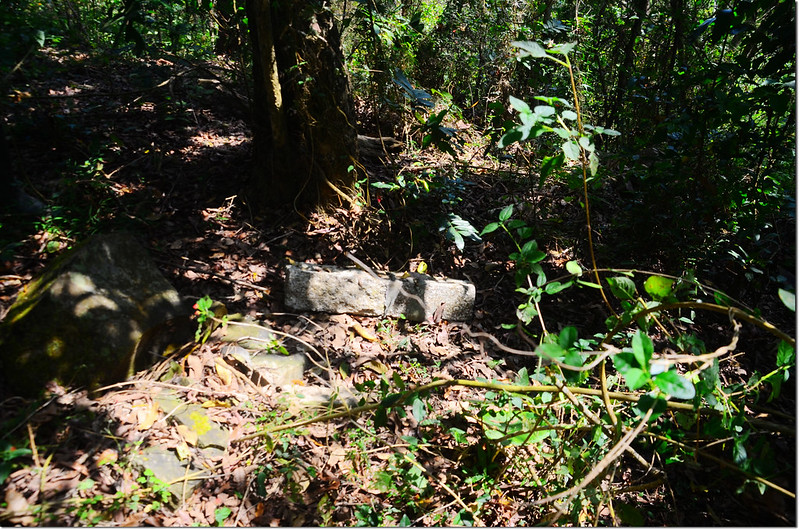 躺臥在地的金瓜寮山圖根點