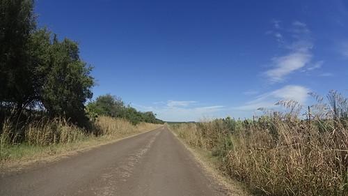 Caminos Rurales Nogoya... 20160207
