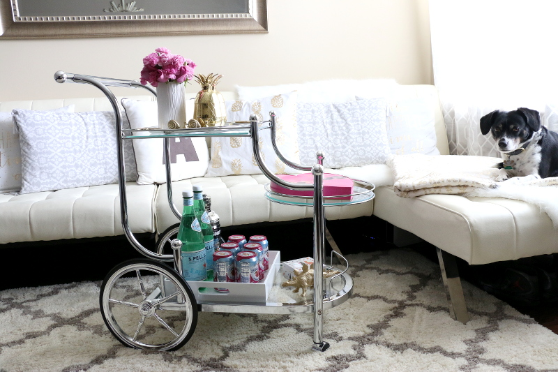bar-cart-home-style-living-room-dog