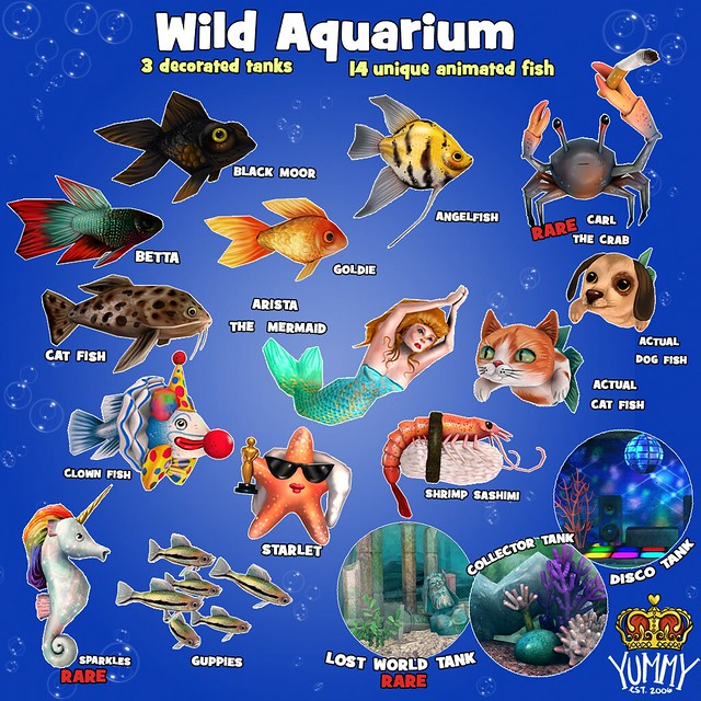 Wild Aquarium for The Arcade